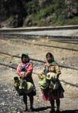 Familia de los indios Foto de archivo libre de regalías