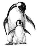 Familia de los pingüinos stock de ilustración