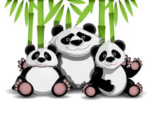 Familia de pandas Fotos de archivo