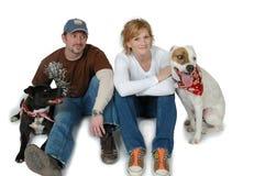 Familia de perro Imagen de archivo libre de regalías