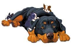 Familia de Rottweiler stock de ilustración