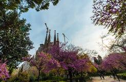 Familia de Sagrada en Barcelona Imagen de archivo