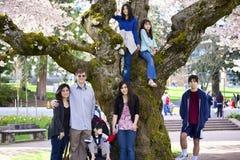 Familia de siete por el cerezo grande en la plena floración Imágenes de archivo libres de regalías