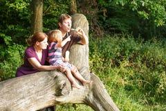 Familia de tres burbujas de jabón que soplan junto en bosque del verano Imágenes de archivo libres de regalías