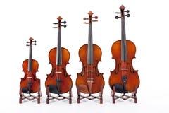 Familia de violines Imagen de archivo libre de regalías