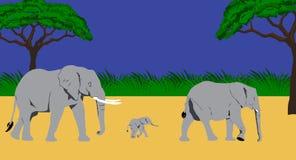 Familia del elefante stock de ilustración