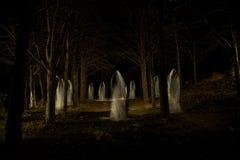 Familia del fantasma en el bosque oscuro fotografía de archivo libre de regalías