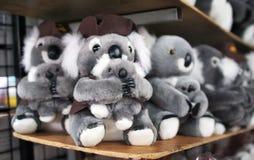 Familia del Koala Imagenes de archivo