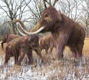 Familia del mamut lanoso en bosque Imágenes de archivo libres de regalías