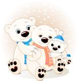 Familia del oso polar