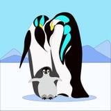 Familia del pinguin del vector en estilo plano Imagen de archivo
