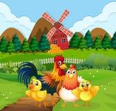 Familia del pollo en las tierras de labrant?o ilustración del vector