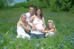 Familia embarazada Fotografía de archivo