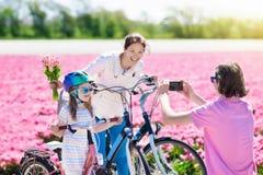 Familia en la bici en campos de flor del tulipán, Holanda fotografía de archivo libre de regalías