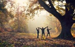 Familia en parque Imagen de archivo libre de regalías