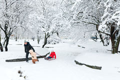 Familia en parque del invierno Imágenes de archivo libres de regalías