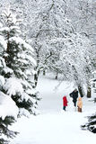 Familia en parque del invierno Imagenes de archivo