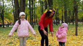 Familia en parque del otoño metrajes