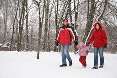 Familia en parque en el invierno Fotos de archivo libres de regalías