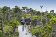 Familia en paseo marítimo que estudia las plantas en un pantano Imagenes de archivo