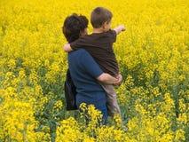 Familia en prado amarillo Imagen de archivo libre de regalías