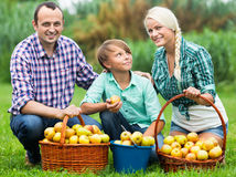 Familia feliz con el adolescente que sostiene cestas Fotografía de archivo