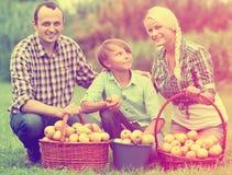 Familia feliz con el adolescente que sostiene cestas Foto de archivo