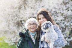 Familia feliz con un perro en un parque de la primavera Imágenes de archivo libres de regalías