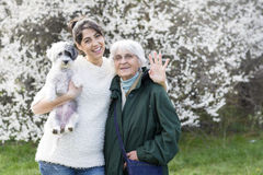 Familia feliz con un perro en un parque de la primavera imagen de archivo