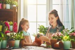 Familia feliz en día de primavera Imagen de archivo libre de regalías