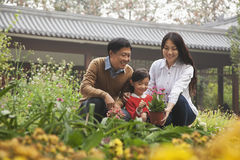 Familia feliz en jardín Fotografía de archivo