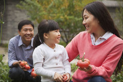 Familia feliz en jardín Fotos de archivo