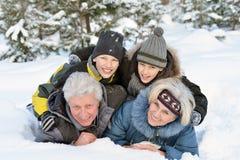 Familia feliz en parque del invierno Imagen de archivo