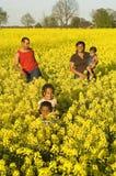 Familia feliz en un campo Fotos de archivo