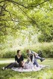 Familia feliz joven Imagen de archivo