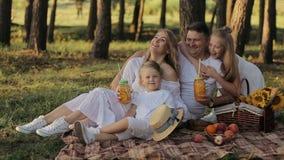 Familia feliz joven que tiene una comida campestre en parque y jugar almacen de video