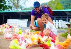 Familia feliz que alimenta pájaros coloridos de la paloma en granja Fotografía de archivo libre de regalías