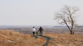 Familia feliz que camina en el prado cerca de un árbol grande durante puesta del sol metrajes