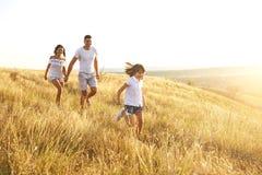 Familia feliz que camina en naturaleza en la puesta del sol en verano fotografía de archivo libre de regalías
