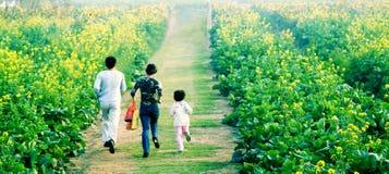 Familia feliz que corre en parque Fotografía de archivo