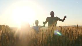 Familia feliz que corre a través de un campo de trigo en el sol en la puesta del sol almacen de video