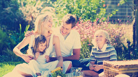 Familia feliz que juega junto en una comida campestre Foto de archivo
