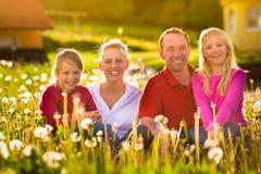 Familia feliz que se sienta en prado del verano Foto de archivo libre de regalías