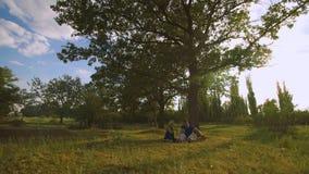 Familia feliz que tiene comida campestre debajo de árbol metrajes