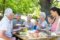 Familia feliz que tiene comida campestre en el parque Imágenes de archivo libres de regalías