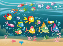 Familia grande de pescados en el mar Imágenes de archivo libres de regalías