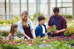 Familia hermosa que mira y que elige las flores en el invernadero Imagenes de archivo