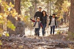 Familia hispánica feliz con dos niños que caminan en un bosque imagenes de archivo