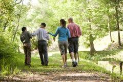 Familia hispánica que recorre a lo largo de rastro en parque Imagen de archivo