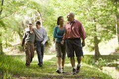 Familia hispánica que recorre a lo largo de rastro en parque Imágenes de archivo libres de regalías